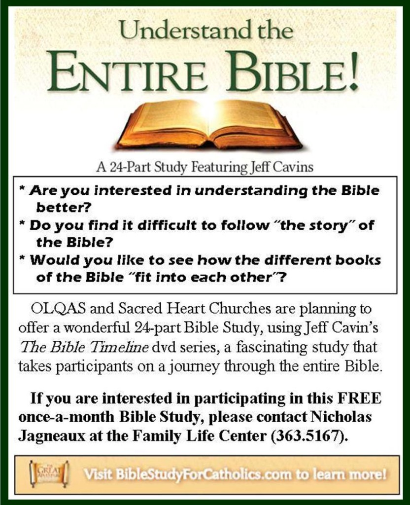 Bible Timeline 1st promo jpeg